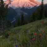 Sonnenaufgang am Mount Rainier.